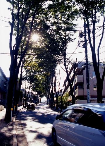 FWtokyu-denentoshiRG054(1).jpg