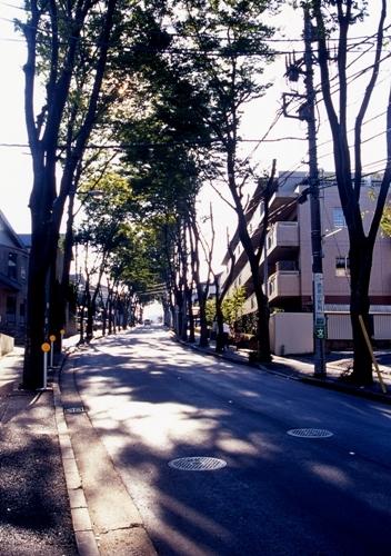 FWtokyu-denentoshiRG056(1).jpg