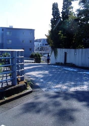FWtokyu-denentoshiRG103(1).jpg