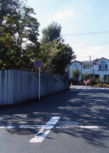 FWtokyu-denentoshiRG106(1).jpg