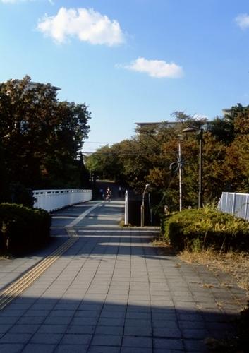 FWtokyu-denentoshiRG112(1).jpg