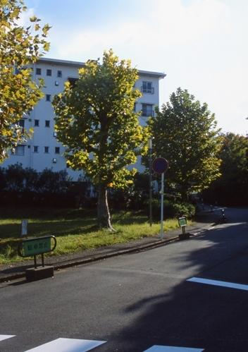 FWtokyu-denentoshiRG116(1).jpg