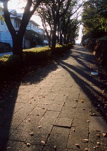 FWtokyu-denentoshiRG129(1).jpg